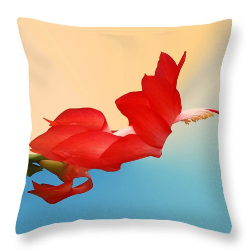 Christmas Cactus Throw Pillow featuring the photograph No Fear Of Flying by Kristin Elmquist