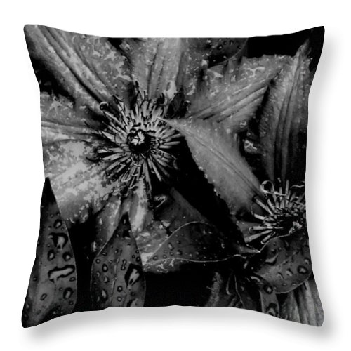 Floral Throw Pillow featuring the photograph Noire Et Gris by Andrea Lynch