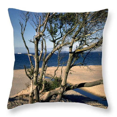 Denmark Throw Pillow featuring the photograph Nordic Beach by Flavia Westerwelle