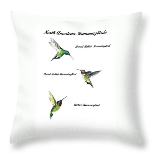 Animals Throw Pillow featuring the painting North American Hummingbirds by Michael Vigliotti