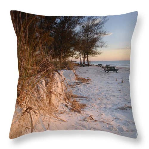 North Beach Throw Pillow featuring the photograph North Beach by David Lee Thompson