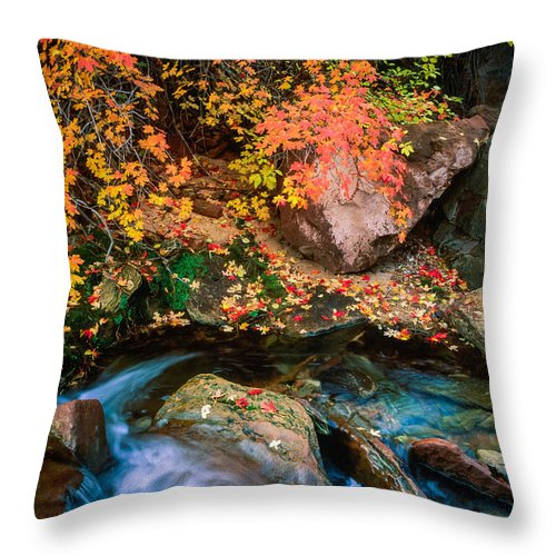 America Throw Pillow featuring the photograph North Creek Fall Foliage by Inge Johnsson