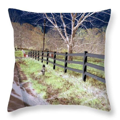 Tree Throw Pillow featuring the photograph Not So White by Charleen Treasures