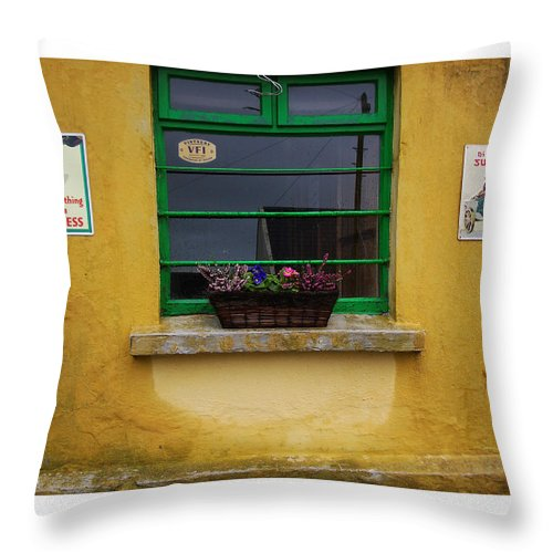Ireland Throw Pillow featuring the photograph Nothing Like A Guinness by Tim Nyberg