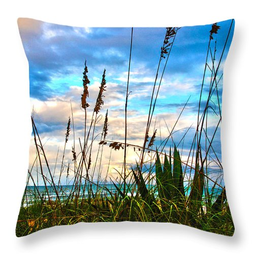 November Day At The Beach In Florida Throw Pillow For Sale By Susanne Van Hulst