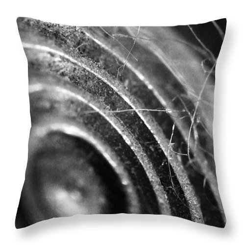 Skip Hunt Throw Pillow featuring the photograph Now Hear This by Skip Hunt
