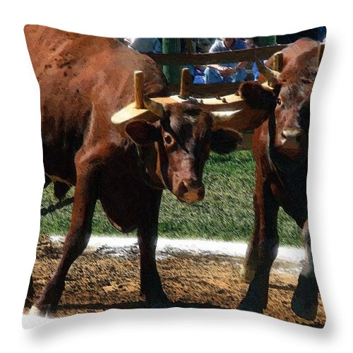 Oxen Throw Pillow featuring the painting Now What by RC DeWinter