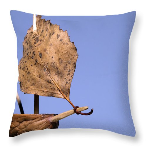 Art Throw Pillow featuring the photograph Nutshell Sailboat by Shu Fu