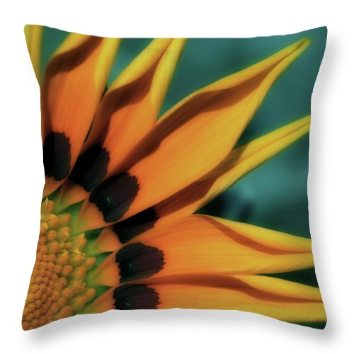 Blanket Flower Throw Pillow featuring the photograph O Happy Day by Bonnie Bruno