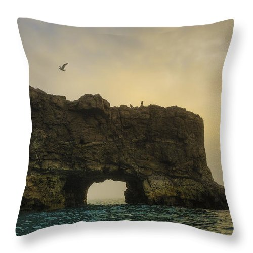 Glaucous Gull Throw Pillow featuring the photograph O Mighty Rock... by Nina Stavlund