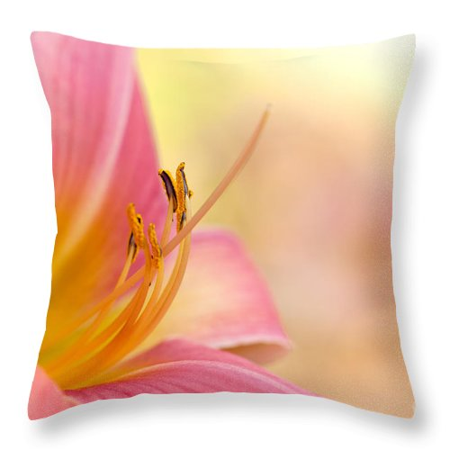 Daylily Throw Pillow featuring the photograph O That Summer Passion by Beve Brown-Clark Photography