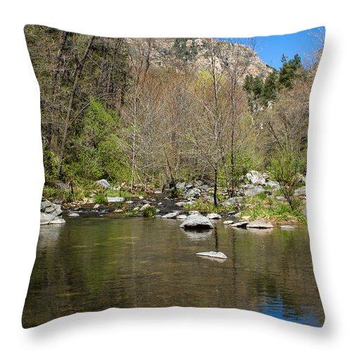 Oak Creek View Throw Pillow featuring the photograph Oak Creek View by Bonnie Follett