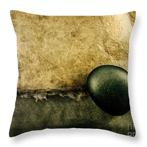 Dipasquale Throw Pillow featuring the photograph Obligatory by Dana DiPasquale