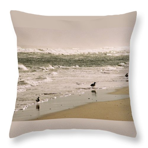 Seascape Throw Pillow featuring the photograph Ocean Edge by Steve Karol