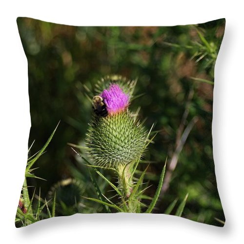 Wildflowers Throw Pillow featuring the pyrography Oceanside Wildflower With Bee by Robert Morin