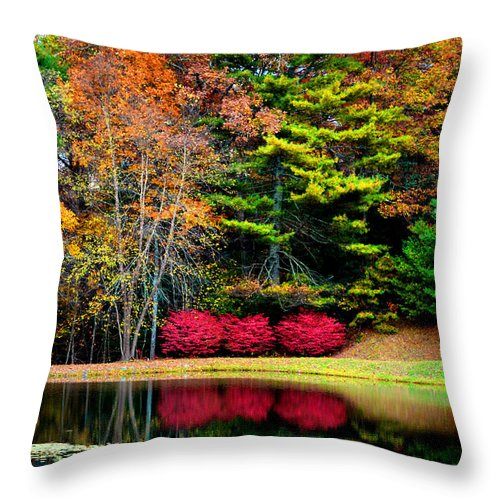 Fall In The Blue Ridge Throw Pillow featuring the photograph October Afternoon In The Blue Ridge Mountains by Susanne Still