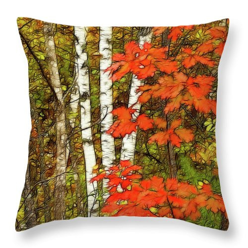 Fractal Forest Throw Pillow featuring the photograph October Fling by Bill Morgenstern