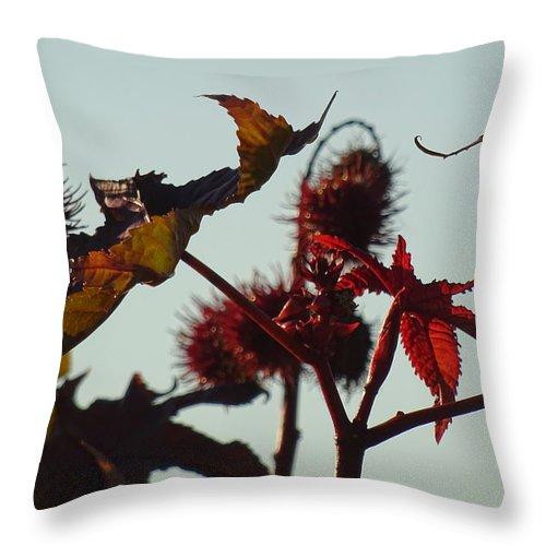 October Throw Pillow featuring the digital art October Light by Marc Dettloff