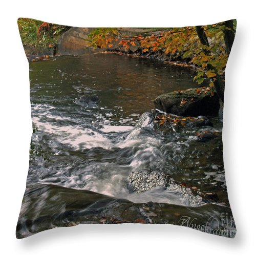 Zoomlavie Throw Pillow featuring the photograph October River by Angel Vallee