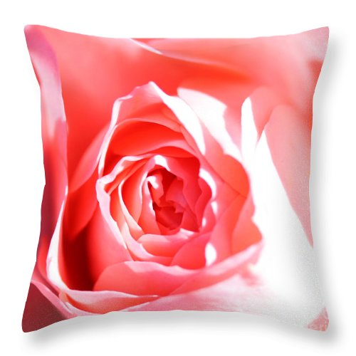 October 2010 Rose Throw Pillow featuring the photograph October Rose Close Up by Nick Gustafson