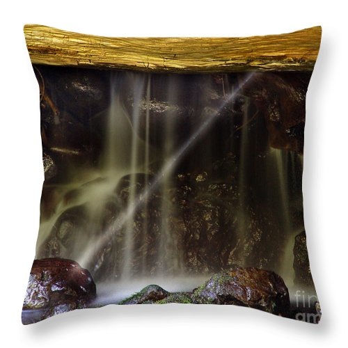 Water Trickle Throw Pillow featuring the photograph Of Light And Mist by Peter Piatt