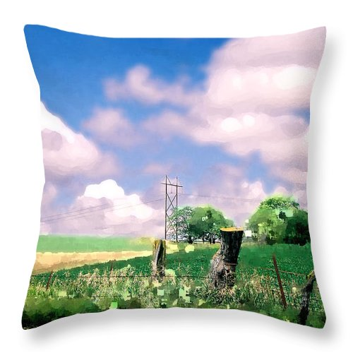 Landscape Throw Pillow featuring the photograph Off The Grid by Steve Karol