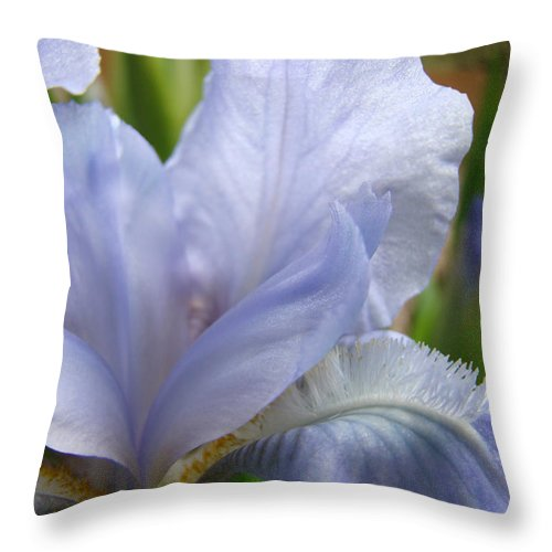 Iris Throw Pillow featuring the photograph Office Art Blue Iris Flower Floral Giclee Baslee Troutman by Baslee Troutman