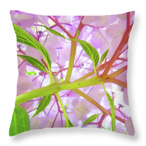 Hydrangea Throw Pillow featuring the photograph Office Art Botanical Hydrangea Flowers Giclee Art Prints Baslee Troutman by Baslee Troutman