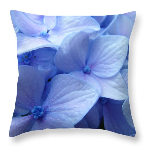 Hydrangea Throw Pillow featuring the photograph Office Art Prints Blue Hydrangea Flowers Giclee Baslee Troutman by Baslee Troutman