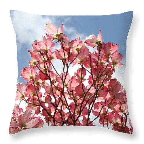 Office Throw Pillow featuring the photograph Office Art Prints Blue Sky Pink Dogwood Flowering 7 Giclee Prints Baslee Troutman by Baslee Troutman
