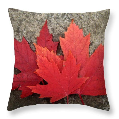 Canadian Symbols Throw Pillow featuring the photograph Oh Canada by Reb Frost