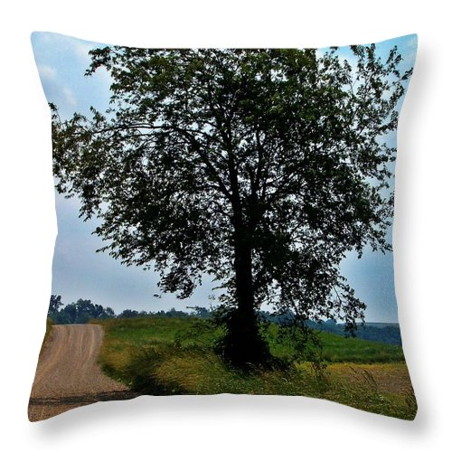 Ohio Throw Pillow featuring the photograph Ohio Back Roads by Sara Raber