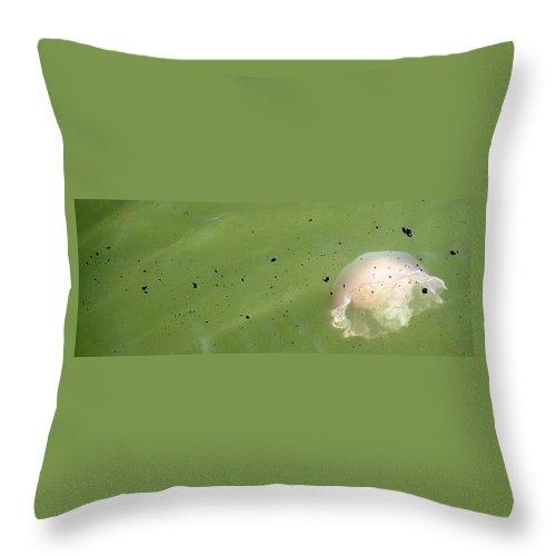 Oil Spill Throw Pillow featuring the photograph Oil Vs Jellyfish by Kurt Hausmann