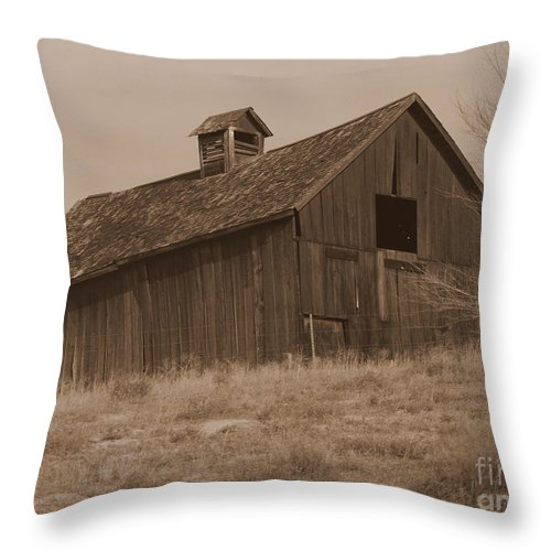 Old Barn Throw Pillow featuring the photograph Old Barn In Washington by Carol Groenen