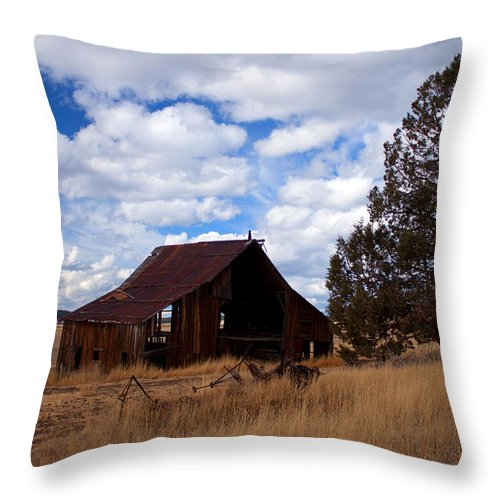 Barn Throw Pillow featuring the photograph Old Barn by Merrill Beck