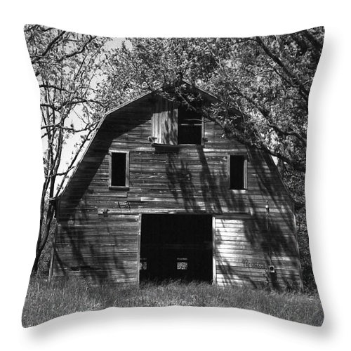 Barrns Throw Pillow featuring the photograph Old Cedar Barn by Richard Rizzo