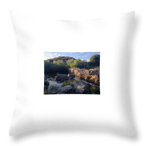 Landscape Throw Pillow featuring the photograph Old Dam by Theresa Metri