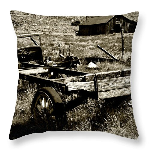 Old Fella Throw Pillow featuring the photograph Old Fella by Chris Brannen