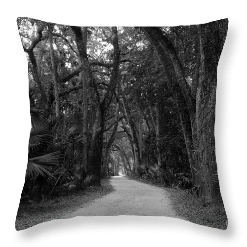 Landscape Throw Pillow featuring the photograph Old Florida by David Lee Thompson