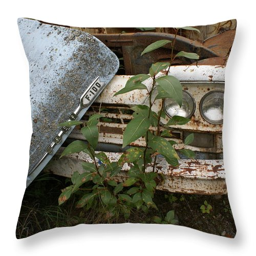 Old Ford Truck Throw Pillow featuring the photograph Old Ford Truck by Mary Ourada