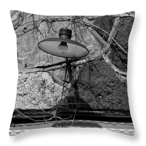 Old Throw Pillow featuring the photograph Old Light Texas by Mark Grayden