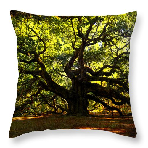 Angel Oak Throw Pillow featuring the photograph Old Old Angel Oak In Charleston by Susanne Van Hulst