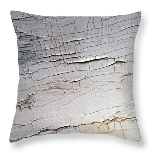Paint Throw Pillow featuring the photograph Old Siding by Richard Rizzo
