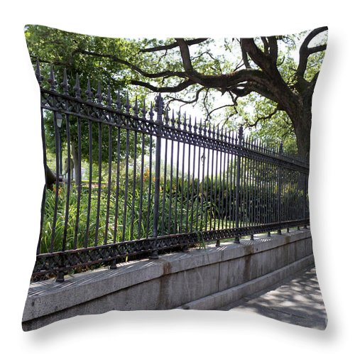 Landscape Throw Pillow featuring the photograph Old Tree And Ornate Fence by Todd Blanchard