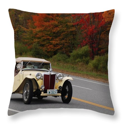 Mg Throw Pillow featuring the photograph Old Yeller 8168 by Guy Whiteley