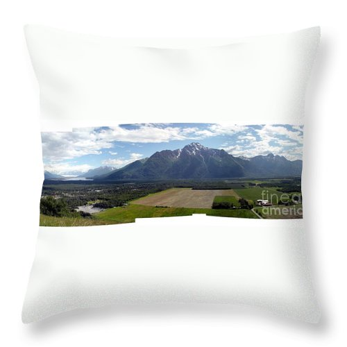 Landscape Throw Pillow featuring the photograph On A Butteiful Day by Ron Bissett