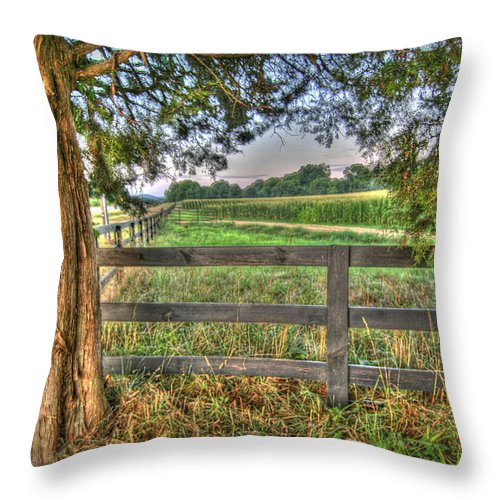 High Dynamic Range Throw Pillow featuring the photograph On The Farm by Patricia Montgomery
