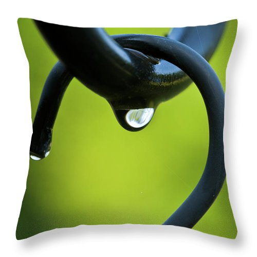 Hook Throw Pillow featuring the photograph On The Hook by Christopher Holmes