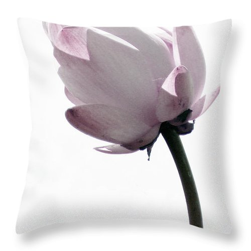 Lotus Throw Pillow featuring the photograph On the inside by Amanda Barcon