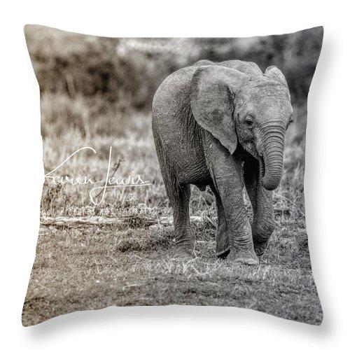 #baby #elephant #onetherun #running #cute #adorable #sweet #innocent #africa #masaimara #kenya #shootpicturesnotelephants Throw Pillow featuring the photograph On The Run by Karen Lewis